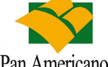 Empréstimos PanAmericano – Vantagens e Contatos