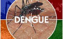 Saiba Tudo Sobre A Dengue