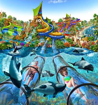 Aquática Sea World Em Orlando