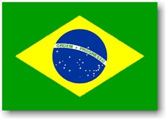 Copa do Brasil 2010