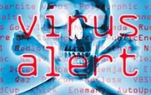 Tifóide – Único e Maior Inimigo Da Internet