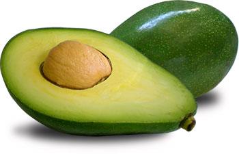 Tudo Sobre O Abacate