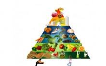 Alimentos Necessários Para uma Dieta Depois dos 40 Anos