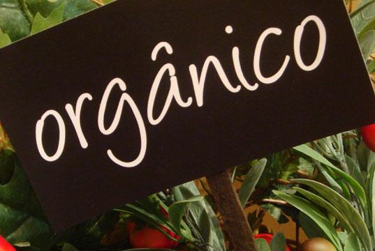 Importância Dos Alimentos Orgânicos