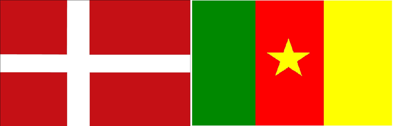 Camarões e Dinamarca Ao Vivo – Copa do Mundo 2010
