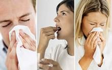 Gripe E Resfriado – Receitas Caseiras Curar E Evitar