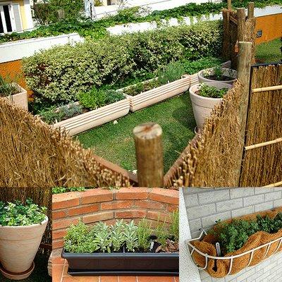 Montar Uma Horta Em Casa