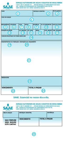 SAAE- 2º Via de Conta Pela Internet