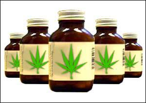 Maconha Liberada Para Medicamentos