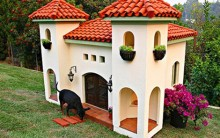 Casinhas Luxuosas de Cachorros