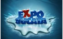 Expo – sucata 2011
