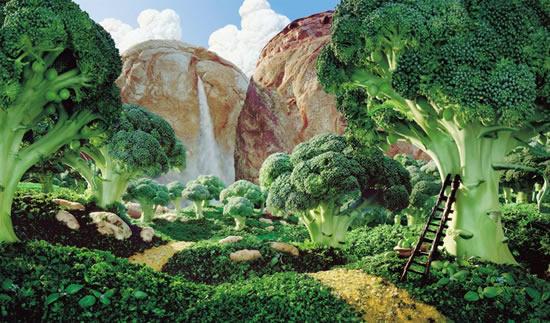 Paisagens Comestíveis – Alimentos