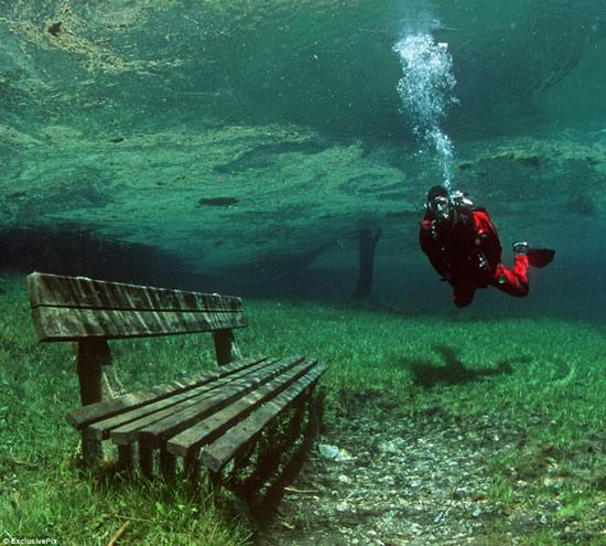 Parque Em Baixo Da Água