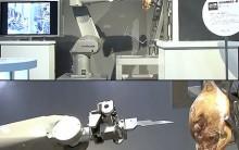O Novo Robô Que Desossa Carnes