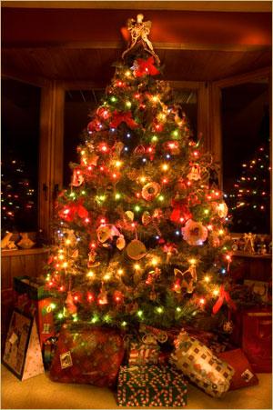 Árvore de Natal 2011