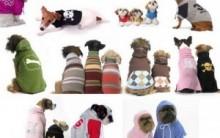 Roupas de Cachorro Para o Inverno  2011