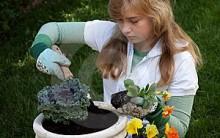 Jardinagem Para Adolescentes