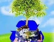 A Importância Da Coleta Seletiva Para O Meio Ambiente