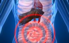 Acidez No Organismo – Informações
