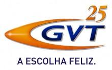 GVT – Internet Banda Larga | Informações
