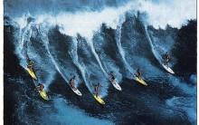 Surf E Suas Precauções