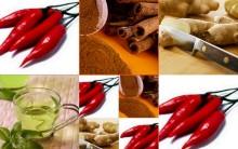 Alimentos Termogênicos- Objetivo