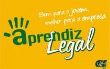 Aprendiz Legal 2011- O Que é e Como Participar