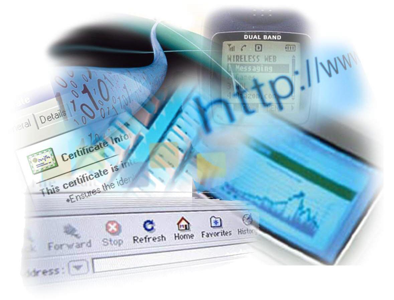 Fazer Compras Pela Internet- Dica de Segurança