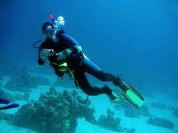 Rimak Escola de Mergulho – Informações