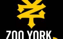Zoo York – Loja Online