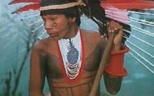A Arte dos Índios