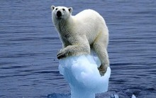 Problemas do Futuro – Aquecimento Global e Camada de Ozônio