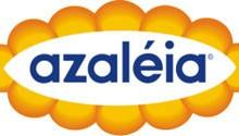 Coleção Azaléia para o Verão 2012- Modelos, Cores, Tendências