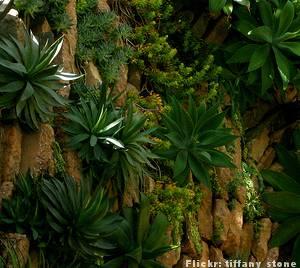 Decoração de Jardim com Plantas – Modelos de Jardim Vertical