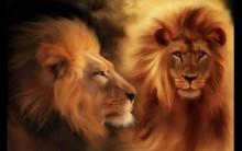 Previsões de Horóscopo 2012 Para o Signo Leão – Dinheiro, Saúde, Amor