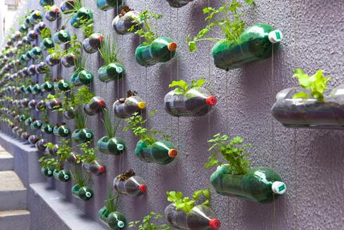 Horta Vertical Orgânica em Casa – Dicas, Como Fazer