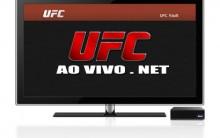 UFC 148 Ao Vivo e Online – Anderson Silva X Sonnen, Combate, Resultado, Quem Venceu / Ganhou?
