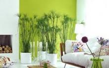 Decoração de Casa – Cores Verde – Dicas, Fotos e Modelos