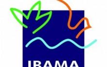 Concurso Público  IBAMA 2013- Inscrições, Vagas, Provas, Taxa