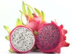 Os Benefícios da Fruta Pitaya – Ajuda a Perder Peso Com Saúde