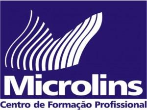 Cursos Gratuitos Microlins São Roque 2013 – Informações