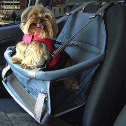 Acenso de Carro Para Cachorro – Modelos, Preços, Ande Comprar