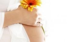 Gravidez Saudável – Dicas, Tipos de Partos, Informações