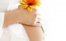 Tratamento Para Engravidar Gratuito