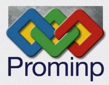 Prominp-2013