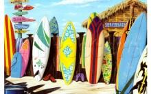 Pranchas de Surf Para Iniciantes – Onde Comprar, Qual o Preço, Modelos