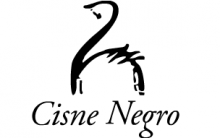 Curso de Dança Estúdio de Ballet Cisne Negro – Informações, Contatos, Enviar Mensagem ao Estúdio
