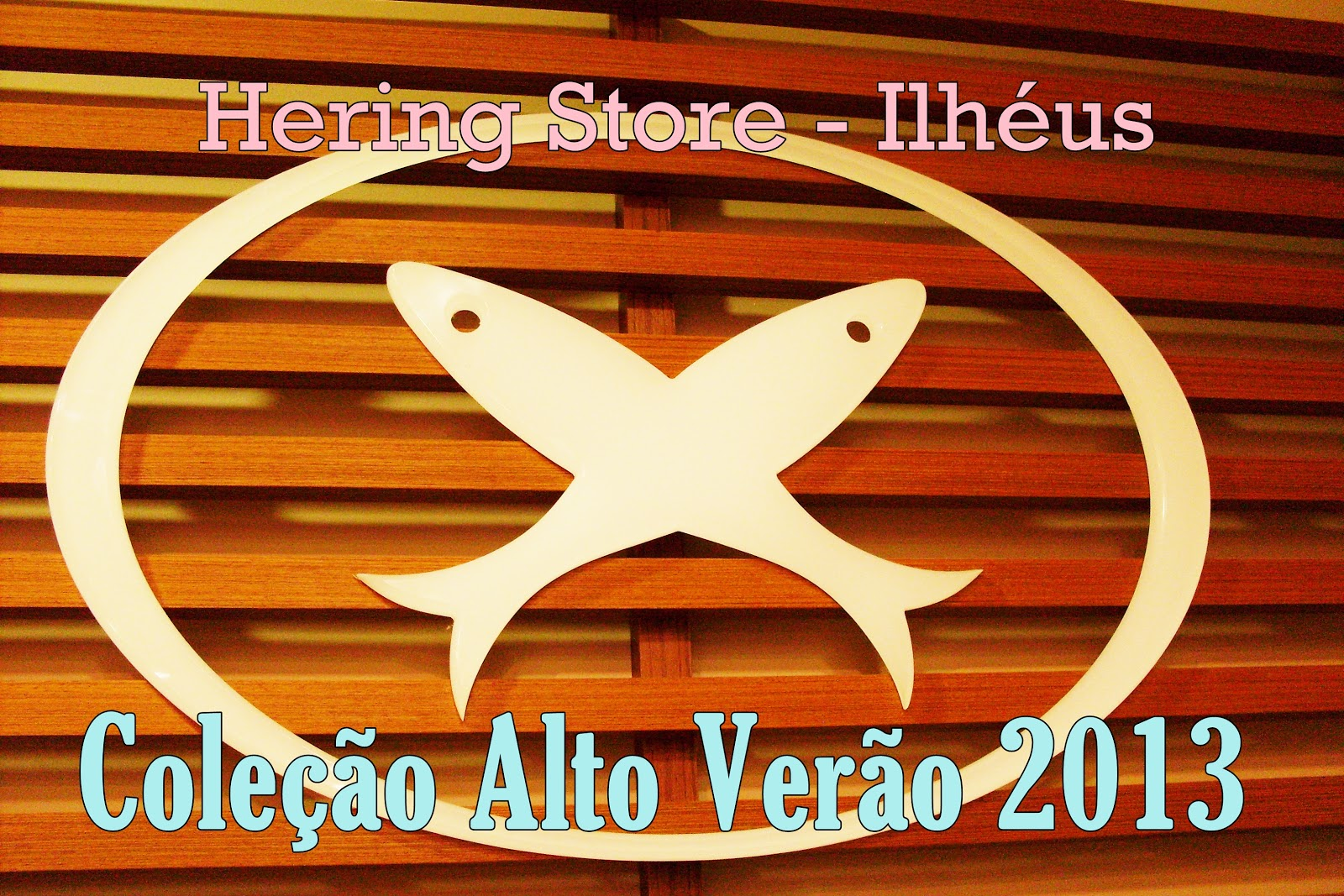 Hering Coleção Verão 2013 – Fotos, Modelos e como Comprar na Loja Virtual