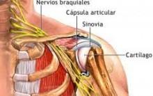Bursite – Sintomas, Causas e Tratamento