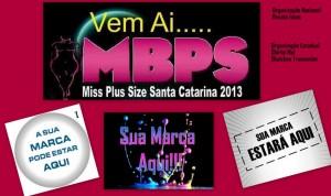 mis plus sizes sc 2013